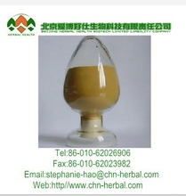 Radix Notoginseng Extract/Sanchi Extract/total saponins 30%