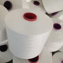 Chinese golden supplier for raw white polyester yarn
