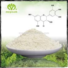 Dihydromyricetin dhm vine tea extract