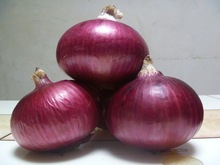 good for health red onion