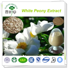 8% 10% 50% natural paeoniflorin White Peony Root Extract