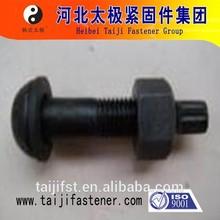 ASTM F1852 Tor shear type high strength bolts 120MM