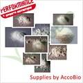 De alta calidad l- arginina akg( aakg), fuente de la fábrica al por mayor l- arginina alfa cetoglutarato 1:1 2:1