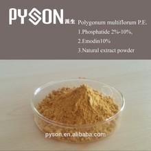 100% natural Radix Polygoni Multiflori extract, polygonum multiflorum extract (Fo-Ti Extract )