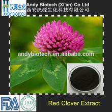 New Arrival 100% Pure Organic Red Clover P.E.
