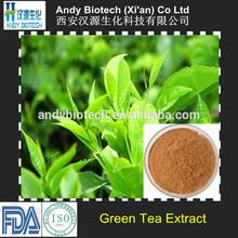 Polyphenol 98% Natural China Green Tea Extract Powder