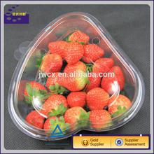 Food Grade PET Chocolate box Blister Plastic Strawberry Tray