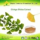 Natural best quality ginkgo biloba p.e Ginkoflavones