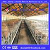 Professional pig farm design,piggery farm design from China designer