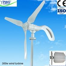 El viento 300w de energía para la iluminación led, de carga, y bajo- carga de consumo de energía de la electricidad