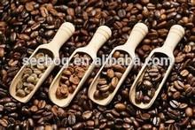 Exportation péruvienne café à la chine Guangzhou port