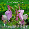 ISO Certificated Ononis Spinosa Extract Formononetin Used For Health Care