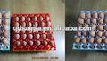 Bandeja de huevos de plástico huevo de incubadora de la bandeja para la venta de la alta calidad del precio bajo de la familia