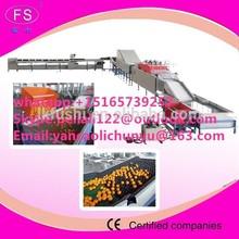 fruit processing line for washing waxing sorting apple/lemon/mango/orange/pomelo