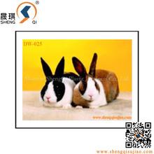 Customized 3d design plastic 3d lenticular picture of cute rabbit