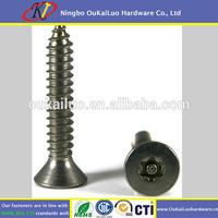 Stainless steel torx countersunk head tamper proof security screw/Pin torx head