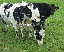 Goat / Horse / Sheep / Deer Hinge Joint Mesh Fence