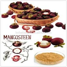dried mangosteen fruit/dried mangosteen fruit extract/dried mangosteen fruit powder