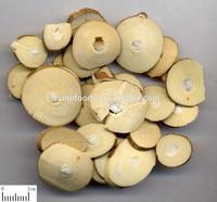 crude medicine herbs Ramulus mori