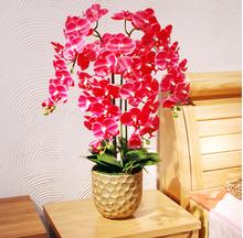 unique wholesale orchid bonsai artificial red orchid potted flower nature orchid bonsai pot for indoor decoration