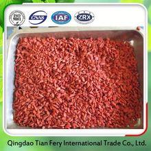 Dried Goji Berry Best Price Per Kg