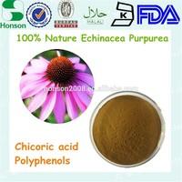 dried echinacea purpurea leaf and flower extract