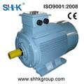 220v eléctrica de ca motor de jaula de ardilla de alta eficiencia