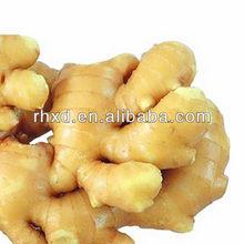 ginger buyers from Czech,Turkey