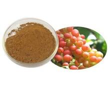 Natural Schisandra P.E.Schisandrins 1%~9%