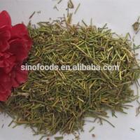 ma huang dry leaf crude medicine herbs ma huang