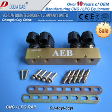 Fabricación gnc / glp inyector common Rail para 3 4 6 8