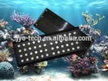 Best-selling Saltwater 3 watt Sunrise Sunset Moonlights remote dimable and programmable aquarium lighting pet shop