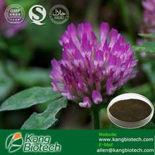 574-12-9,Isoflavone,Red Clover Extract,Trifolium pretense L