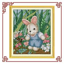 NKF cute boy rabbit(1) cross stitchery patterns