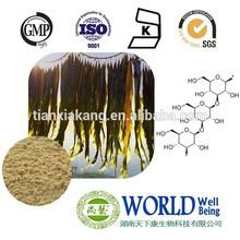 polysaccharide 30% Seaweed Kelp Extract