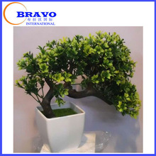 bonsai tree best selling products hot new products for 2015 green plants garden decoration