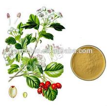 Best quality Epimedium Extract, Epimedium extract powder, icariin 50% 60% 80% 98% epimedium extract
