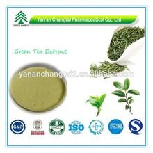 GMP Factory Supply Organic Green Tea Extract