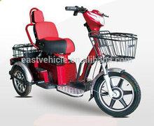 E Rickshaw for Leisure