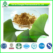 GMP factory supply Hot sale Low price Total Flavone Glycosides24%