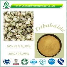 GMP 20%-90% Plant Extract Tribulus terrestris saponins