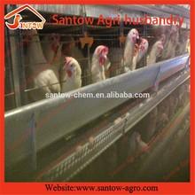 Multi-tier A type galvanized automatic chicken cage for farm