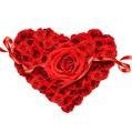 evlilik dekoratif yağlıboya kırmızı gül toptan