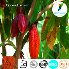 Herbal extract losing weight cocoa bean extract20%