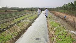 dongguan adidas raw material manufacturer Non-woven polypropylene Non-Woven Silver fern Tote Bag