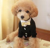 New design hot sale cheap high quality new arrival big dog dog coat xxl