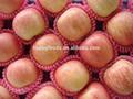 maçã fresca de nomes de frutas vermelhas maçã fruta frutas maçã preços de mercado