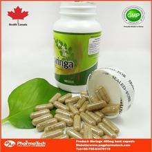 Chino productos orgánicos extracto moringa