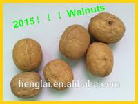 walnut buyers,raw walnut in shell,walnut in shell