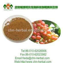 High quality Schisandra chinensis Extract/chinese schisandra/china schisandra extract